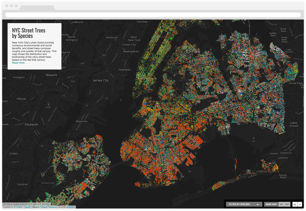 Biodiversity and distribution of NYC trees