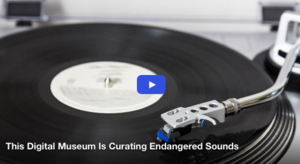 This Digital Museum Is Curating Endangered Sounds