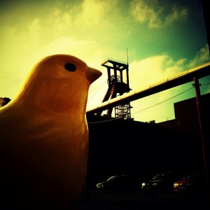 An Inclusive Parable: Canaries in the Coal Mine