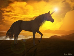 """Trying to Create The Next Unicorn? Start by Asking """"WTF"""""""
