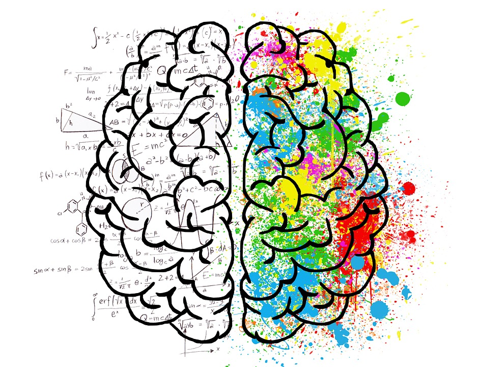 Image result for left brained vs right brained
